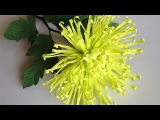 ABC TV How To Make Spider Chrysanthemum Paper Flower From Crepe Paper - Craft Tutorial