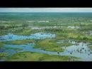 Okavango Africa's Wild Oasis Full Documentary with subtitles