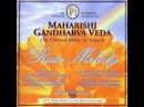 Amar Nath Ragha Megha Part 2 Raga Megha Rain Melody