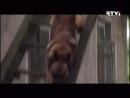 Украсть Бельмондо (RTVI, 04.06.2017) Фрагмент 1