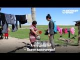 Как целое село в Кыргызстане живет без чистой воды