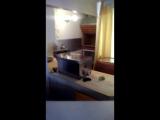 Расул Аскер шиштапа кафе Санкт Петербург скоры откройм првет