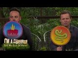 Ant vs Dec in Quiz - Snake or Cake  I'm A Celebrity...Extra Camp