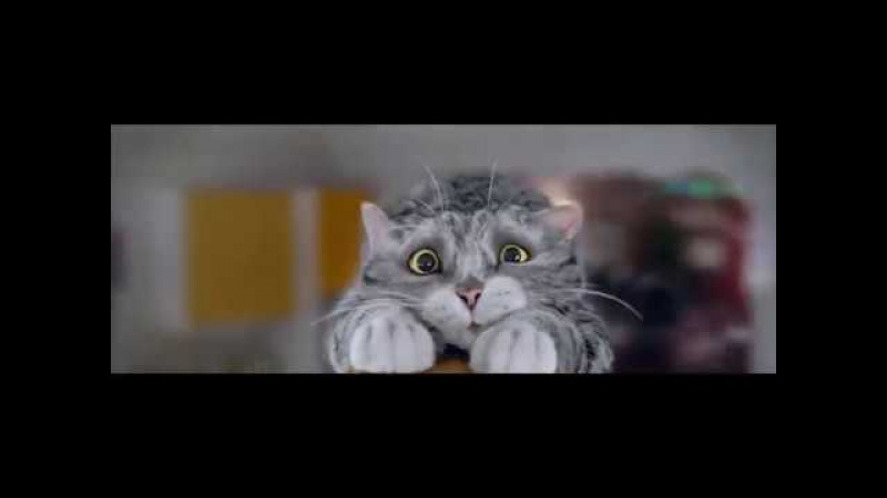 Sainsbury's Christmas Advert – Mog's Christmas Calamity