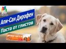 Паста от глистов для собак и щенков - Дирофен | Апи-Сан Дирофен - паста | Api-San Dirofen review