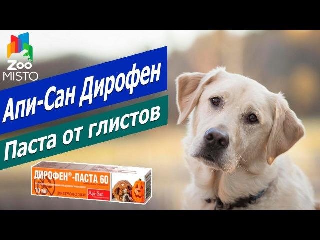 Паста от глистов для собак и щенков Дирофен