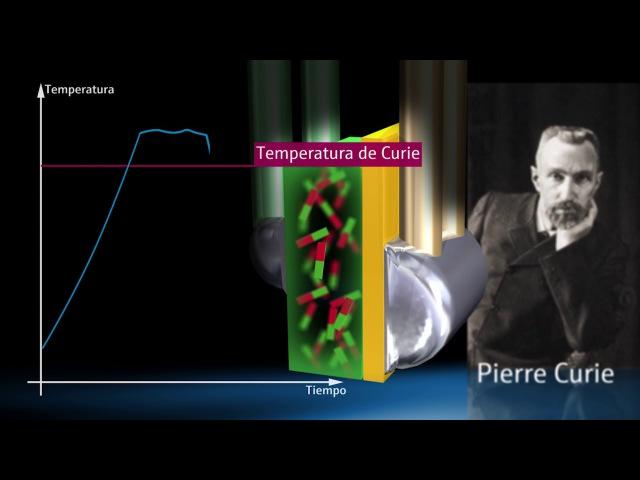 El primer sensor de temperatura compacto auto calibrable - iTHERM TrustSens