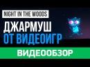 Обзор игры Night in the Woods