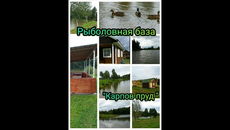 Карпов пруд