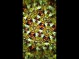 Amazing glitch kaleidoscope