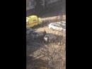 Человек выпал с 3 этажа, возможно пьяный или под наркотой в Бийске