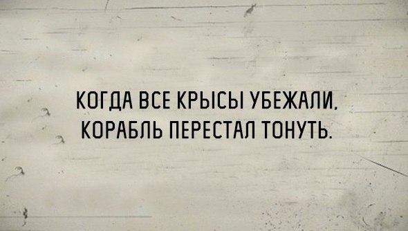 Фото №456242703 со страницы Анастасии Моховиковой