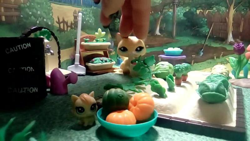LPS видео на конкурс группе Littlest Pet Shop