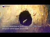 В Серебряном Бору обнаружен самый большой дятел в России