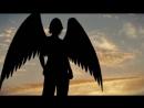 Magisto-movie 24