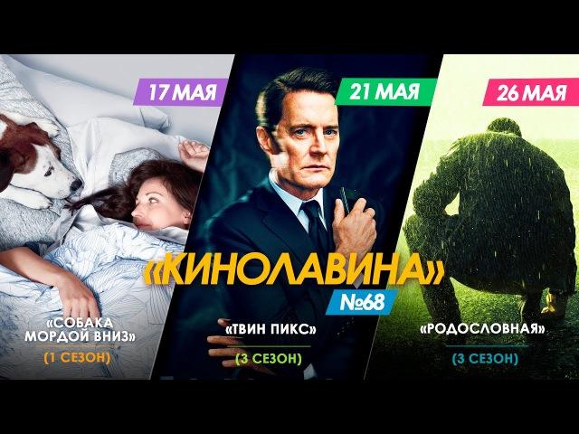 68) Сериалы Собака мордой вниз | Твин Пикс - 3 сезон | Родословная - 3 сезон [киноЛ ...