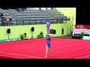 EuroAcro 2013 Junior WP BLR Balance Final