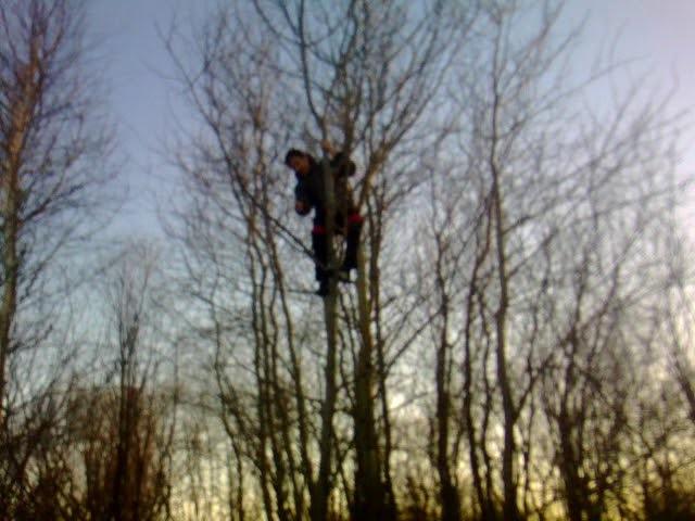 падение с дерева 2