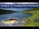 Ловля Пыжьяна на Подкаменной Тунгуске. Русская Рыбалка 3.99.