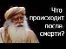 Садгуру - Что происходит после смерти Джагги Васудев