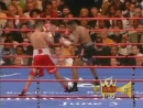 2005-05-14 Felix Trinidad vs Ronald «Winky» Wright (WBC Middleweight Title Elimi