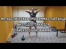 Метаболическая программа спартанца - комплекс физподготовки для тайского бокса...