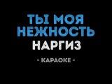 Наргиз Закирова - Ты моя нежность (Караоке)