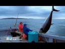 Animal Planet Крупный улов