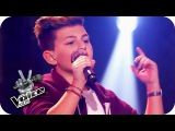 Shawn Mendes - Stitches (Merdan)   The Voice Kids  Blind Auditions  SAT.1