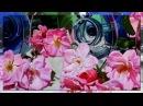 Андрей Обидин Мелодия для души Великолепные картины Hillary Eddy
