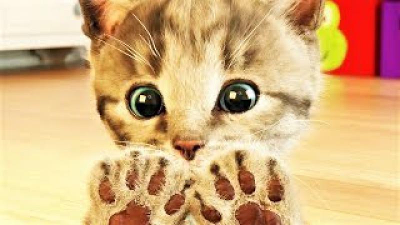 Мой Маленький Котик. Мой Виртуальный Питомец Котенок. Симулятор котика для детей.