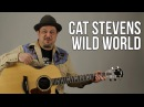 How To Play Cat Stevens - Wild World