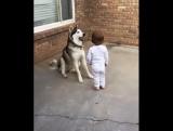 Маленькая дрессировщица