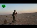 Война в Сирии, 30 - 31 августа 2017