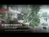 В Дагестане мощные порывы ветра повалили деревья, столбы, рекламные щиты