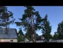 Валка деревьев ,8 963 300 23 89 часть.1 Ведущий, Алексей ,Коновалов.