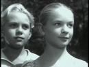 Братья Комаровы (1961)