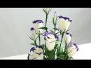 15.2: Làm hoa LAN TƯỜNG bằng giấy nhún - Chia sẻ link QC kiếm tiền