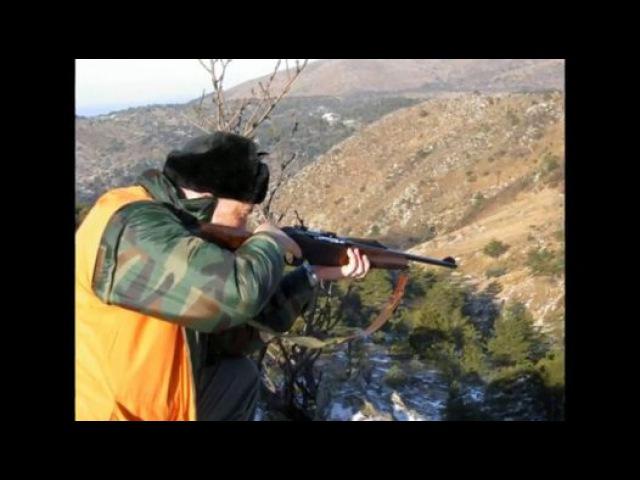 Caccia an Cinghiale Momenti di Caccia Chasse Sanglier Caza Jabali Wild Boar Hunt