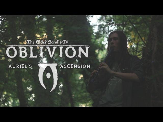 TES IV Oblivion - Auriel's Ascension - Cover by Dryante (Jeremy Soule)