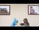 Westfort's Puppet Show Episode 2