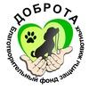 Приют для бездомных собак «Доброта», г. Уфа