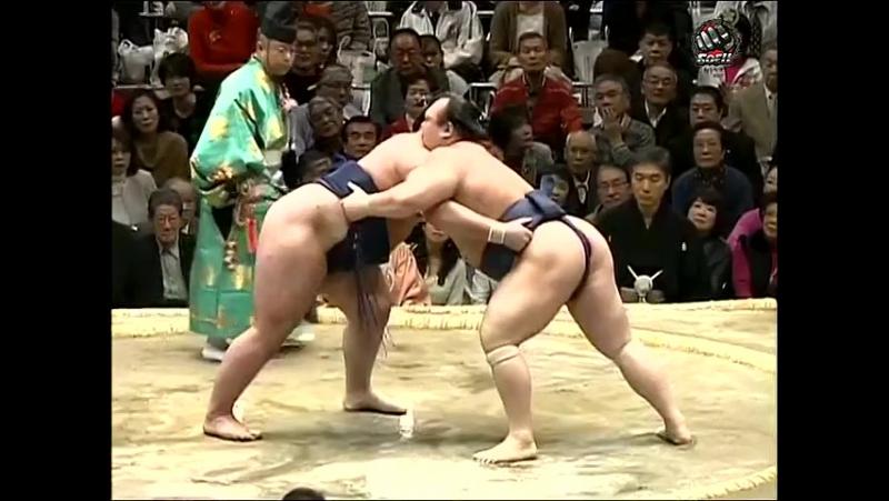 Hatsu Basho: Days 10-12 (2013)