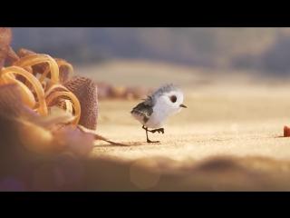 Chú Chim Trên Bờ Biển Piper So cute - YouTube