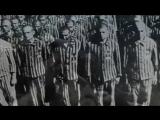 Роль евреев в работорговле-2  Дэвид Дюк