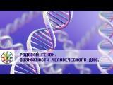Родовой геном. Возможности человеческого ДНК.