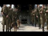 Отряд саперов ВС РФ прибыл в Сирию для разминирования Пальмиры