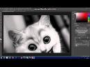 Как наложить одно изображение на другое в Adobe Photoshop.