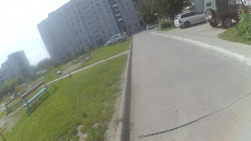 Видеоинструкция -Собака Авто Велосипед в городе часть 2