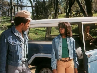 ЧЕЛОВЕК КЛАНА (1974) - триллер, криминальная драма. Теренс Янг